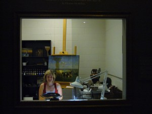 """""""Behind-the-scenes"""" View of  Conservation Lab Through Glass Window"""