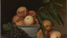StillLifePeale
